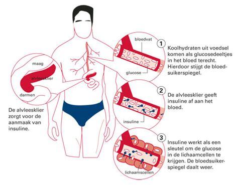 Basis gezondheid gegevens van