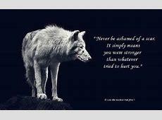 Wise Wolf Quotes QuotesGram