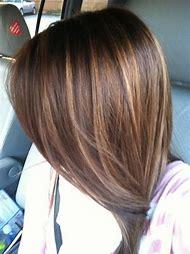 Medium Dark Brown Hair with Caramel Highlights