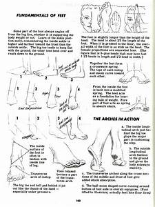 Character And Creature Design Notes  Foot  And Shoe