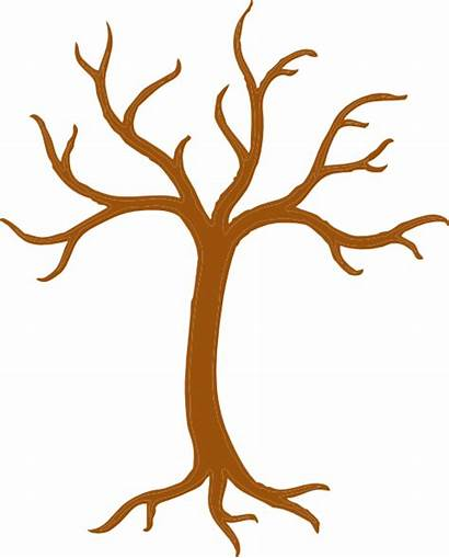 Tree Leaves Without Trunk Clip Clipart Clipartpanda
