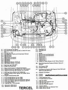Toyota - Ubicacion De Sensores Y Componentes - Light Trucks - Suvs - Vans 1991  2002