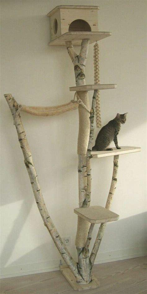 kratzbaum aus baumstamm kratzbaum baumstamm selber bauen
