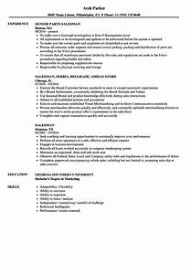 salesman resume samples velvet jobs With saleslady resume sample