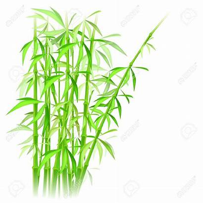 Bamboo Vector Silhouette Clipart Illustration Oriental Background
