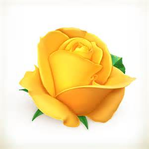 Yellow Rose Vector Files