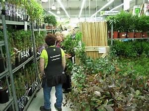 Jardinerie Truffaut Paris : mai 2010 page 11 paris c t jardin ~ Preciouscoupons.com Idées de Décoration