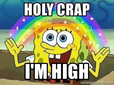 Holy Crap Meme - holy crap i m high imagination meme generator