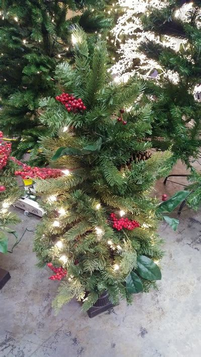 3ft everyday collections potted feel real artificial christmas tree trees martha stewart living winslow fir pre lit decoratedporch trees 3 4 a m