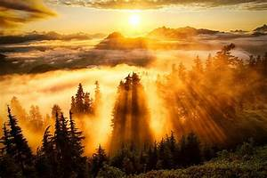 12 Rays Of Light Landscape Sun Rays Forest Mountain Clouds Wallpapers