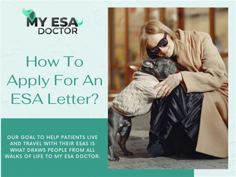 Complete academically approved cpd modules to continue your professional. Pin on My ESA Doctor