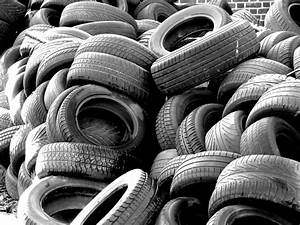 Can You Plant Vegetables Or Plants In Old Car Tires
