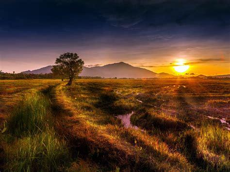 natural landscape sunset trees hills grass streams