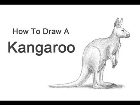 draw  kangaroo youtube