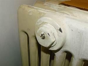 Purger Un Radiateur En Fonte : purgeur radiateur fonte m canisme chasse d 39 eau wc ~ Premium-room.com Idées de Décoration