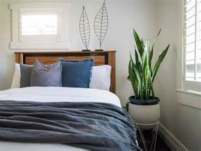 leaf the best plants to grow in your bedroom