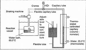 Schematic Diagram Of Measuring Equipment For Oxygen Uptake At Constant