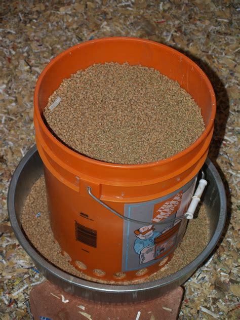 diy chicken feeder feed your chickens for a month with a 10 or less