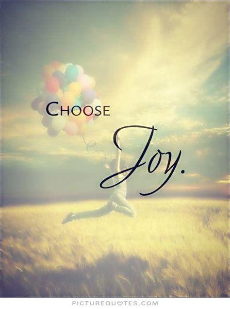 joy quotes image quotes  hippoquotescom