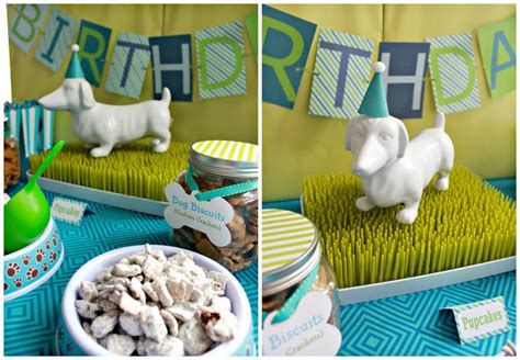 23 Dog Birthday Party Ideas That You Must Take Away. Modern Kitchen Color Ideas. Modern Kitchen Cupboards. Mid Century Modern Kitchen Remodel. Organization For Kitchen Cabinets. Latest Modern Kitchen Design. Modern Kitchen Tap. Simple Modern Kitchen Designs. Country French Kitchen