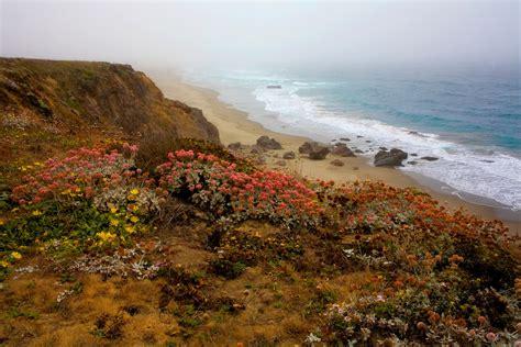 Central California Coast Foggy