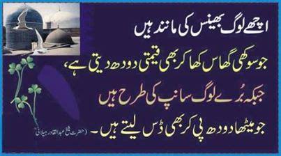 motivational quotes  urdu quotesgram