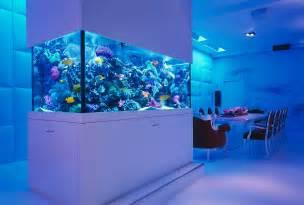 aquarium designer 25 awesome aquariums you wish you owned