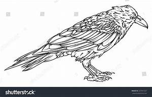 Simple Raven Outline | www.imgkid.com - The Image Kid Has It!