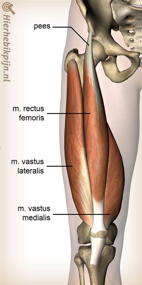 Artrose : symptomen, oorzaak en behandeling (geen slijtage)