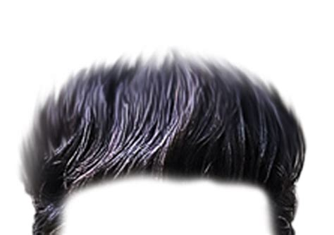 Hair Png & Free Hair.png Transparent Images #49