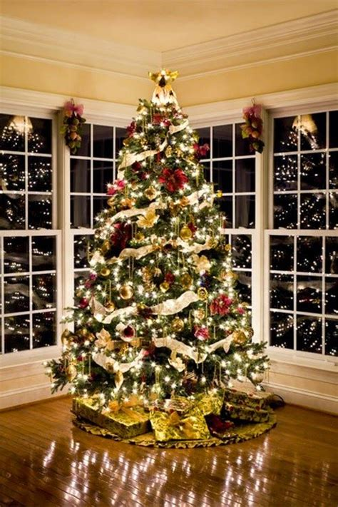 how to put up achristmas tree without a stand tips on how to set up a tree rpm platinum