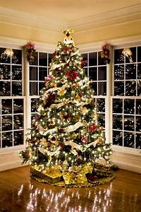 Tips On How To Set Up A Christmas Tree