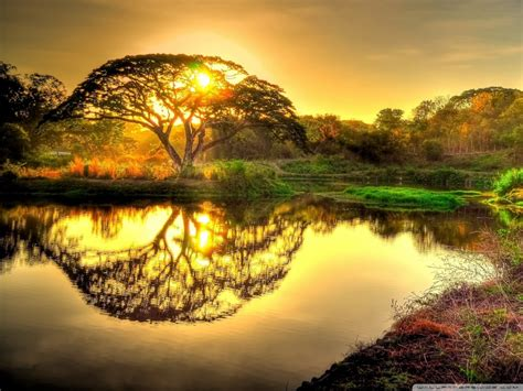 wild sunrise hdr ultra hd desktop background wallpaper