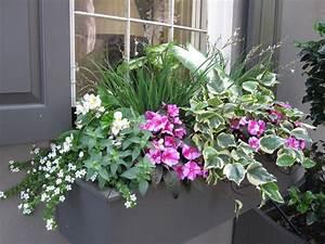 Blumenkübel Bepflanzen Sommer : nice window container balkonkasten fr hjahr sommer pinterest ~ Eleganceandgraceweddings.com Haus und Dekorationen