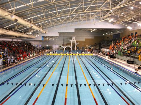 romsey claims win   house swimming carnival ccgs