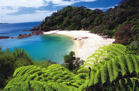 Northland » Planit NZ Travel