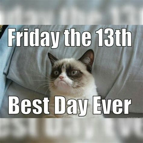 Grumpy Cat Friday Meme - happy friday the 13th cat www pixshark com images galleries with a bite