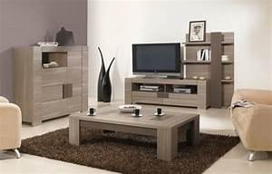 Meuble Tv Suspendu Conforama : meuble tv conforama voir 10 photos ~ Dailycaller-alerts.com Idées de Décoration