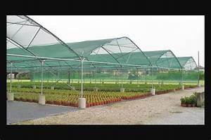 Invernadero, Casa Sombra Venta E Instalación $ 210 00 en Mercado Libre