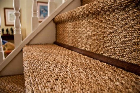 Easy To Clean Area Rugs by Sisal Amp Seagrass Brightfields Natural Trading Company