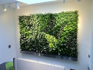 Living Walls : Green Plant and Vertical Garden Walls