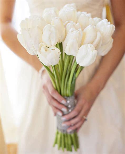 white tulips ideas  pinterest spring flower