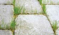pflastersteine verfugen ohne unkraut m 246 rtel f 252 r pflasterfugen selbst de