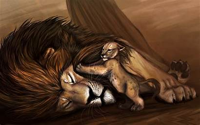 Lion King Wallpapers 2642 1654