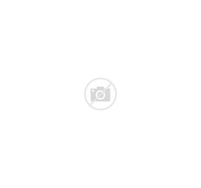 Quick Facts Trocaire College Edu