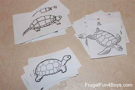 turtle activities for preschoolers 789 | turtle patterns 2