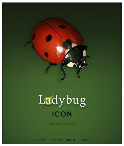 Ladybug Resume by Icon Ladybug Ardust