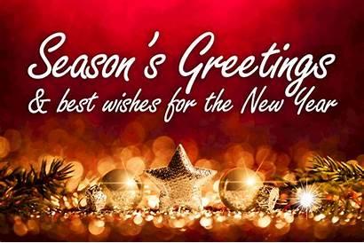 Greetings Holidays Happy Seasons Season Holiday Pines