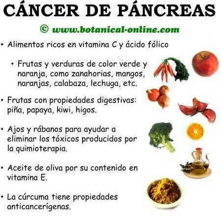 q es el cancer de pancreas dieta contra el c 225 ncer de p