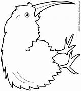 Kiwi Coloring Bird Pages Fruit Clipart Colouring Drawing Printable Print Animal Birds Printables Getdrawings Getcolorings Kaynak Animalstown Dc Lightupyourbrain sketch template